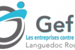 logo gefluc