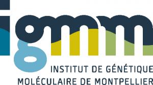 logo-igmm