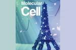 photo molecular cell